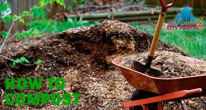 Kimberley Gardening - How to compost