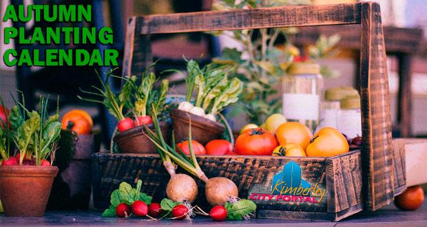 Autumn Kimberley Vegetable & Herb Planting Sowing Calendar