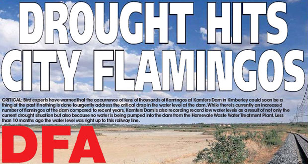 Kimberley's Flamingos Threatened by Drought - The DFA 07/02/2015
