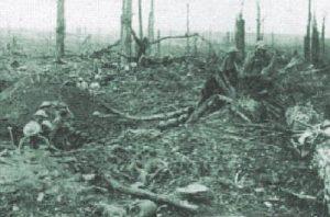 PT-Delville_Wood-1916