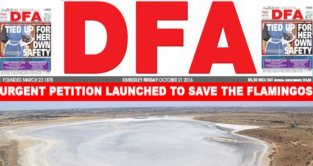 The DFA Today - 20161021