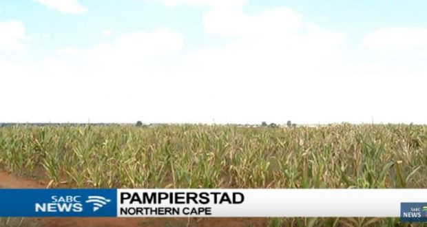 PT-Numbers_of_Farmers_killing_themselves_increases_in_the_Northern_Cape-20170504