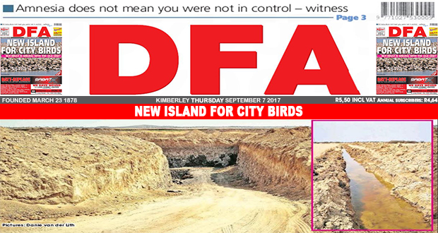 New island for city birds