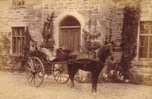 PT-Horse_Drawn_Trap_of_the_1880s