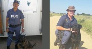 Const Ashley Kock and his patrol dog, Sem, together with Sgt Altus Coetzer and his patrol dog, Tiger