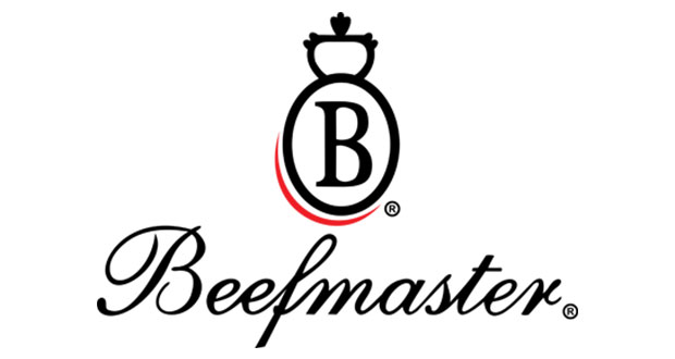 Beefmaster Kimberley